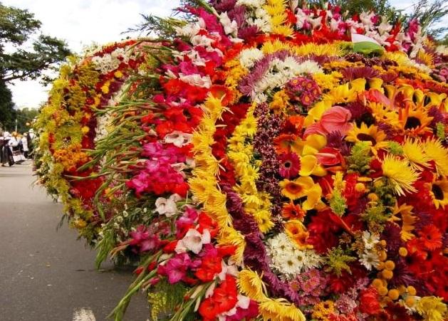 flowers-santa-elena-colombia-yook3%E2%84%A2-
